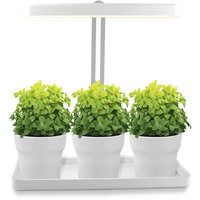 Växtbelysning LED Mini Garden T-tak